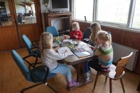Groepsaccommodatie-Friesland-de speeltafel